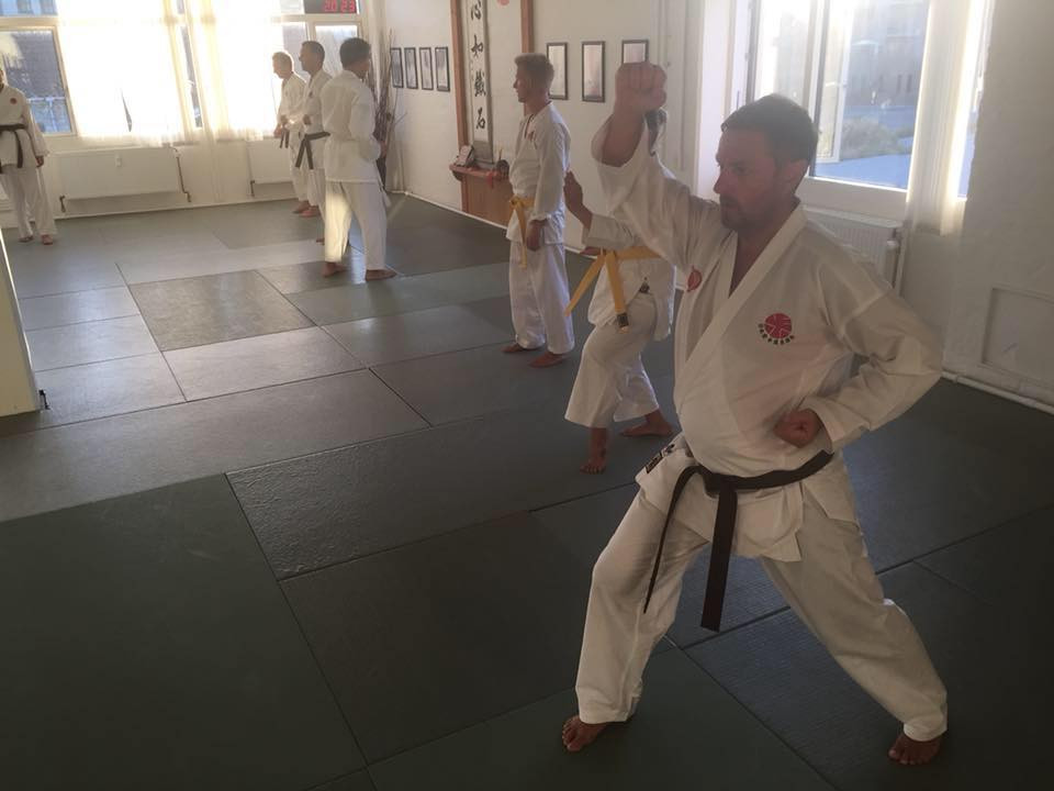 Practice at a dojo in Itosu-kai Denmark in summer time