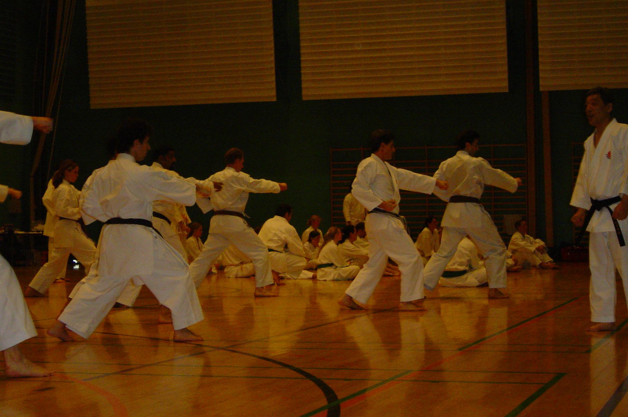 Sakagami sensai seminar 2004 075 (23)