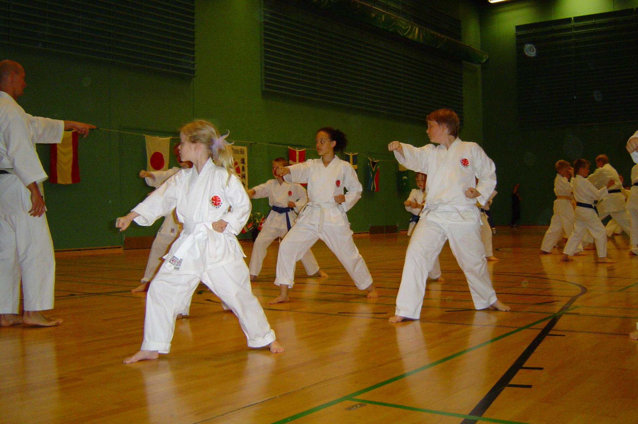 Sakagami sensai seminar 2004 075 (18)