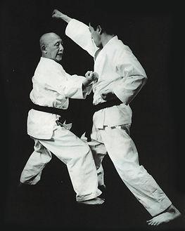 Karate, Aoyagi
