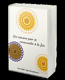 Ebook, Carine Noël, la joie