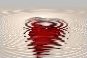 heart-1982316_1920.jpg