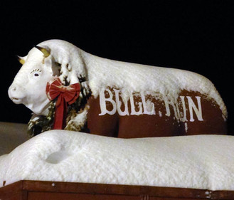 Ye Olde Sandy the Bull, our mascot, covered in snow at Christmastime.