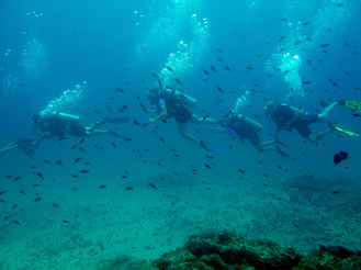Copyright-Go-Pro-Costa-Rica-Oceans-Unlim