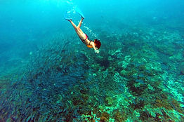 snorkeling-at-cano-island-swimming-with-