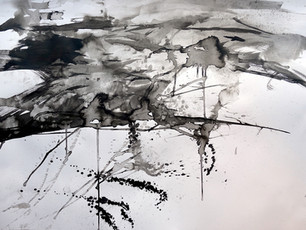 Flow Country ink study III - Heather Lander