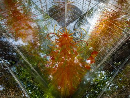 Below The Blanket at Royal Botanic Garden Edinburgh