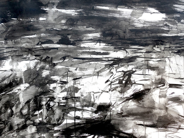 Flow Country ink study II - Heather Lander