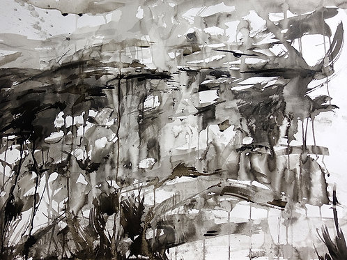 Flow Country Ink Study I