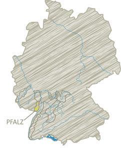 Pfalz Sauvignon.jpg