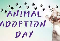 Animal Adoption day.png