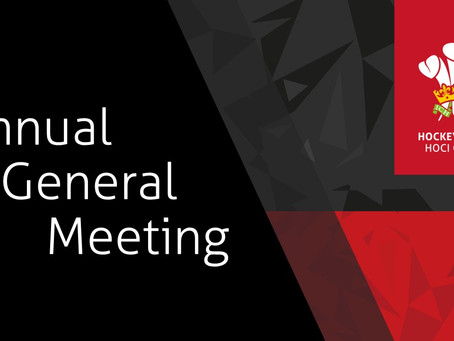 HOCKEY WALES 2019 AGM PAPERS