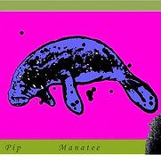 PIP - Manatee - 2015.jpg