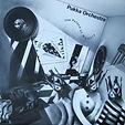 Pukka Orchestra - The Palace Of Memory -