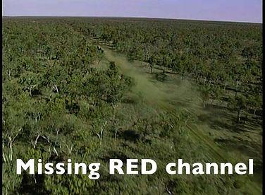 Missing RED.jpg