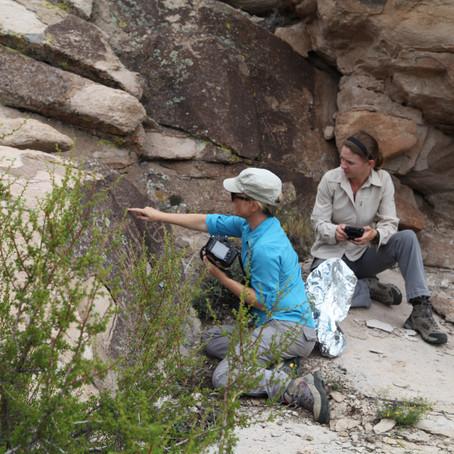 Arid Zone Rock Art Update 2014