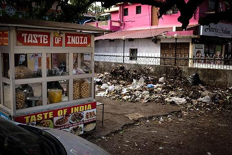 India Auswahl 13 Kopie.jpg