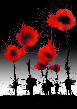 poppies black Card