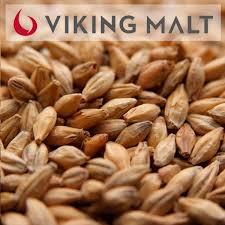 Malte Vienna- Viking