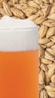 Malte Pale Ale - Best Malz