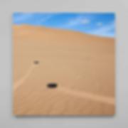 Sand Walk_Bob Bicknell-Knight_40x402.png