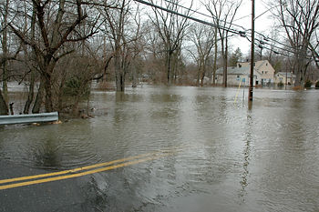Flood insurance from Jean Martin Insurance