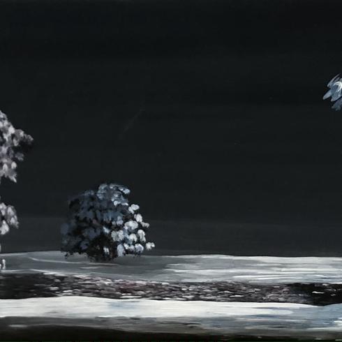 Moonlight - verkauft -