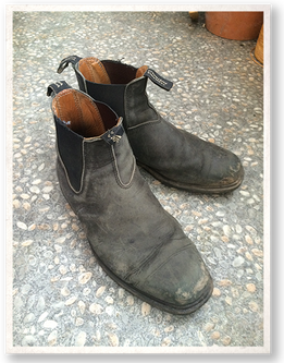Simon's Shoes