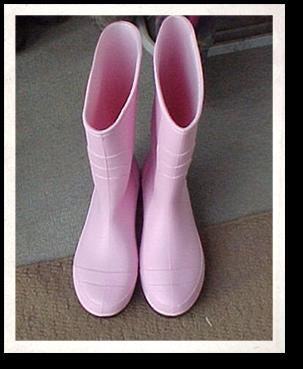 Dixie's Shoes
