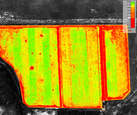 drone uas uav washington farm NDVI vegetation index Pix4D
