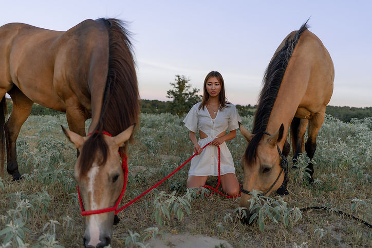 HorseRanch-19.jpg