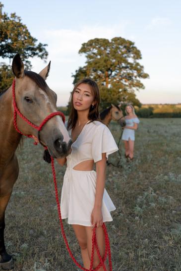 HorseRanch-12.jpg