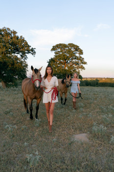 HorseRanch-22.jpg