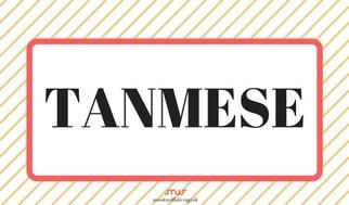 tanmese - NAV