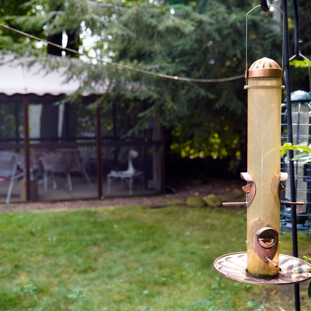 Pretty view of bird feeders