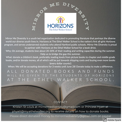 Mirror Me DIversity x Horizons Book Driv
