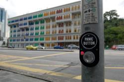 Panic at the Crossing (Panic Button).jpg