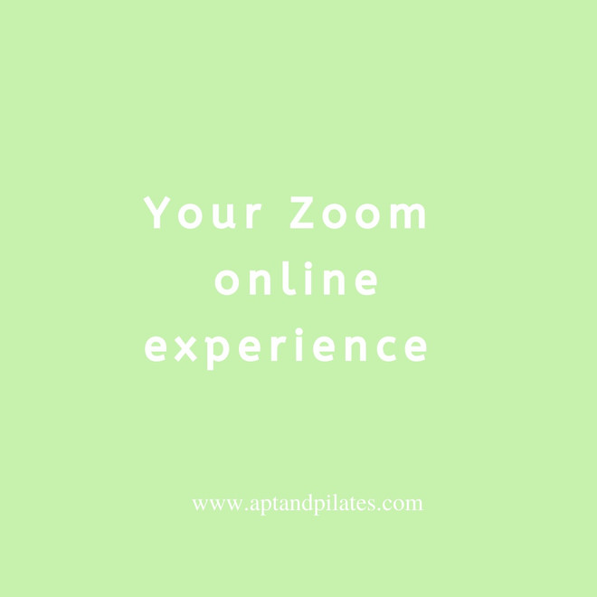 The Zoom Experience