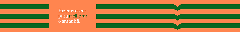 banner-topo-2.png
