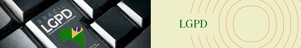 banner-topo-7.png