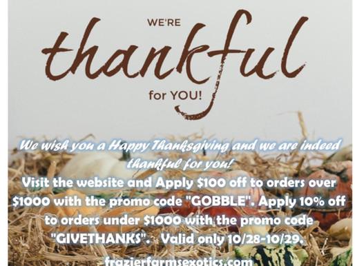 Thanksgiving & Black Friday Codes