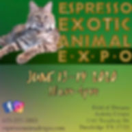 expo advertising.jpg