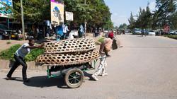 Transport des volailles