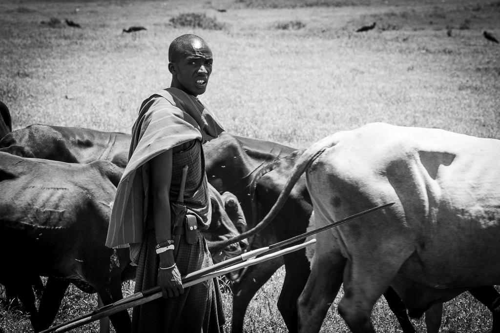 Eleveur Massaï
