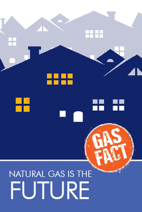 Natural gas is the future