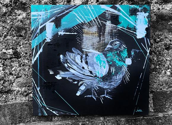 Pigeon 2021 II