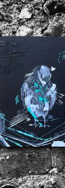 Pigeon 2021 I
