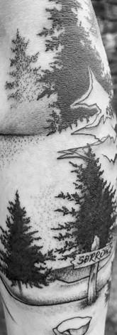 Alpine Sleeve V