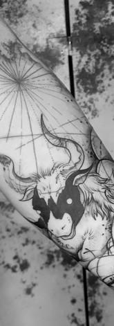 Star Sign Sleeve IV