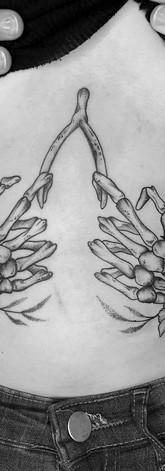 Wishbone Hands